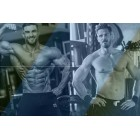Perbedaan Muscle Building dan Strength Training