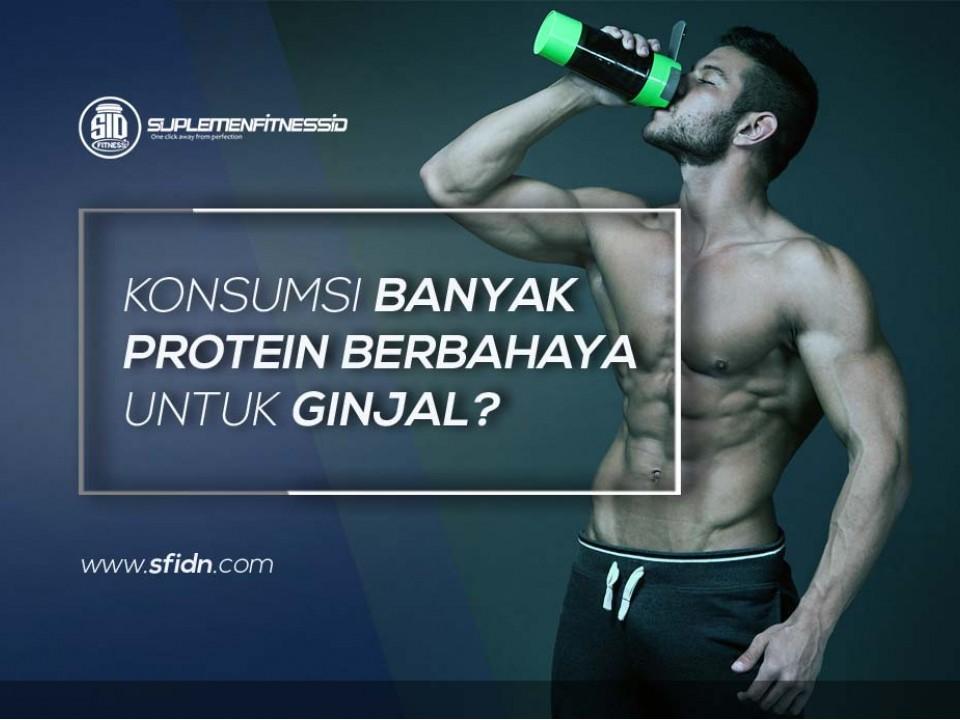 Konsumsi Protein dan Kesehatan Ginjal