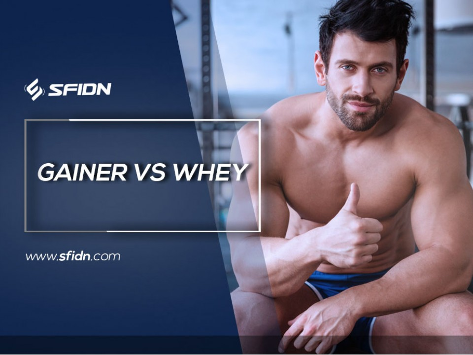 Gainer vs Whey Protein
