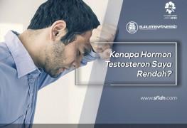 Kenapa Hormon Testosterone Saya Rendah?