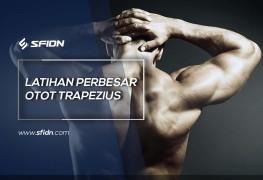 Aneka Latihan Perbesar Otot Trapezius