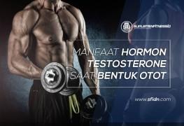 Manfaat Hormon Testosteron saat Bentuk Otot