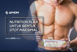 Nutrition Plan untuk Bentuk Otot Maksimal