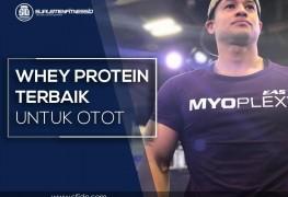 Whey Protein Terbaik untuk membentuk otot